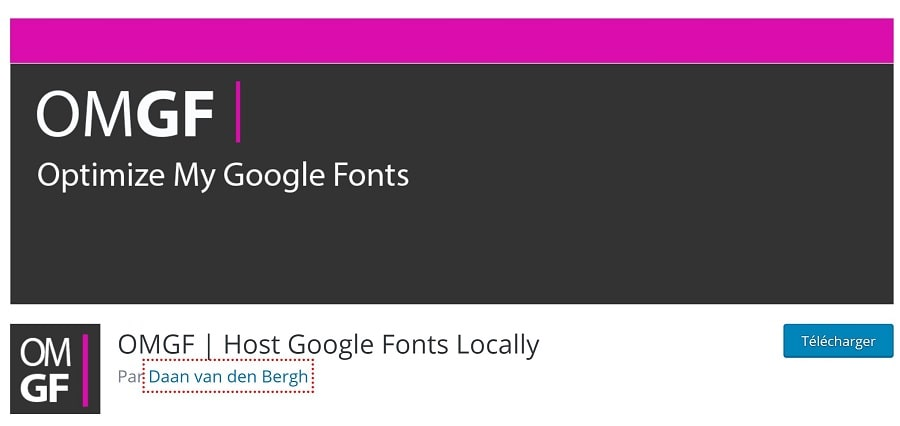 Host My Google Fonts Locally, plugin pour optimiser le temps de chargement des polices sur un site web
